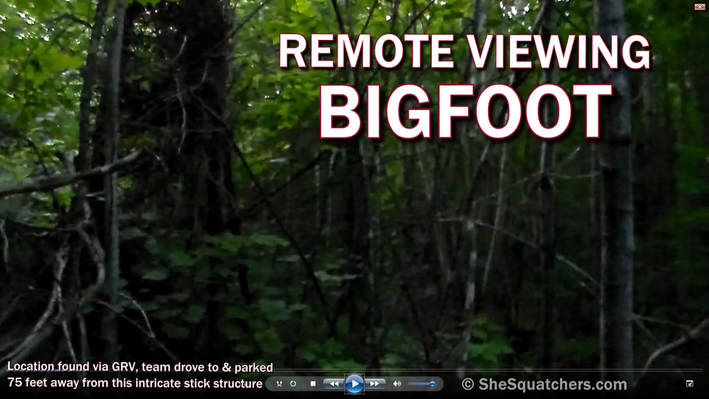 Remote Viewing Bigfoot - Intuitive Advantage - Geographic Remote Viewing finds intricate stick structure - SheSquatchers - All Female Bigfoot Team in Midwest - SheSquatchers.com